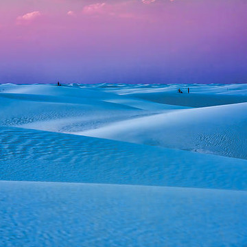 White Sands National Monument Collection
