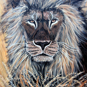Wild Animals Paintings Collection