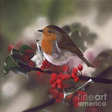 Wild Bird Art Collection