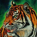 Wildlife-Animals and Birds and Other Creatures Collection