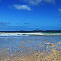 Wilsons Promontory National Park Victoria Australia Collection