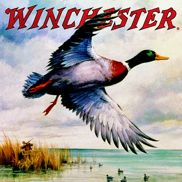 Winchester Waterfowl Artwork Collection Collection