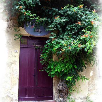 Window and Door Art Collection