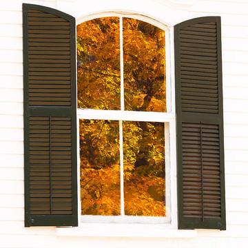 Windows & Doors Collection