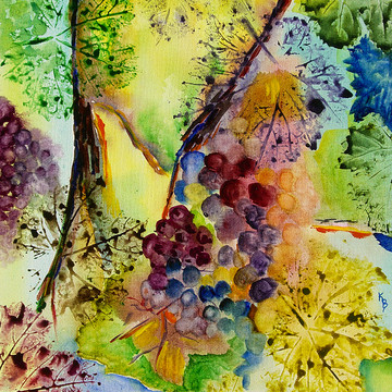 Wine Abstracts Collection