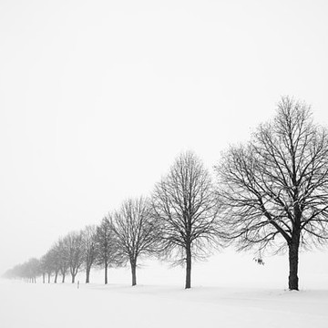 Winter - Snow - Beautiful scenes and landscapes Collection