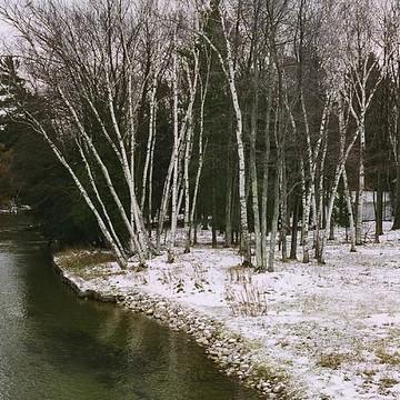 Winter in Michigan