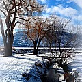 Winter in the Okanagan Collection