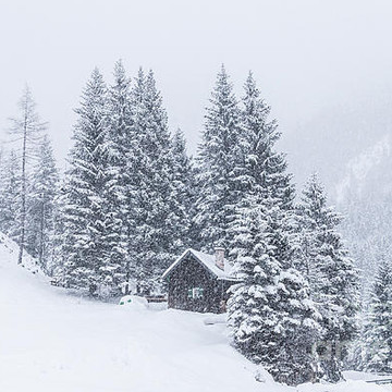 Winter Landscapes and Nature Collection