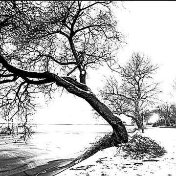 Winter Scene In Germany  Collection