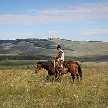 Wyoming Ranching Collection