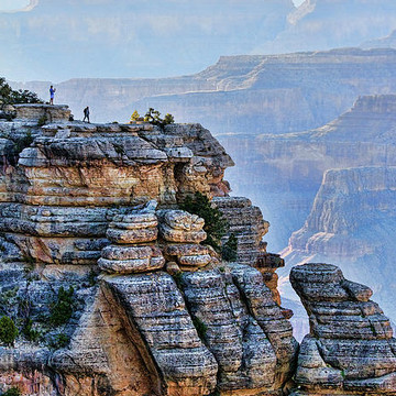 Y Grand Canyon National Park Collection