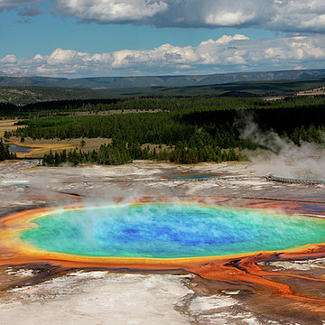 Yellowstone National Park Collection