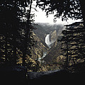 Yellowstone National Park-Stock Images Collection