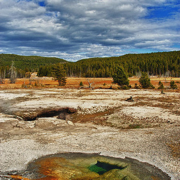 Yellowstone Collection