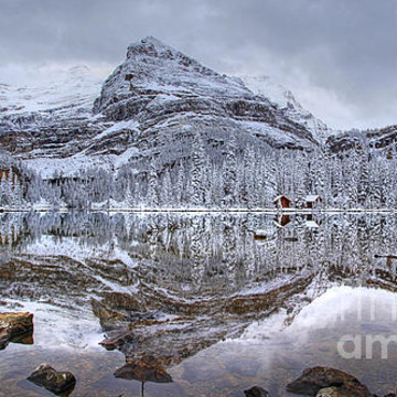 Yoho National Park Collection