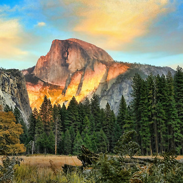 Yosemite National Park Collection