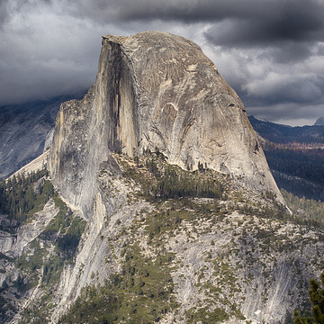Yosemite Collection