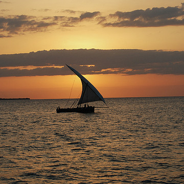 Zanzibar Dhows Collection
