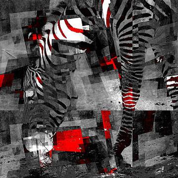 Zebra Art Collection
