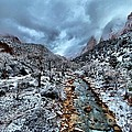 Zion Canyon National Park - Winter Collection