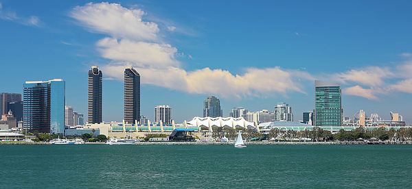 Derrick Neill - A View of San Diego Bay and Downtown