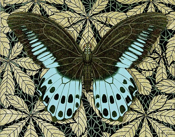 Robert Todd - Butterfly 30