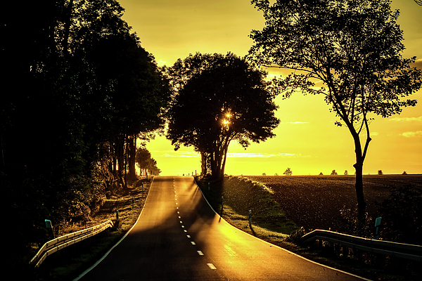 Pixabay - Country Road Sunset