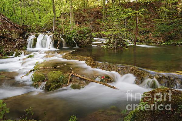 Slavica Stajic - River Landscape in Springtime