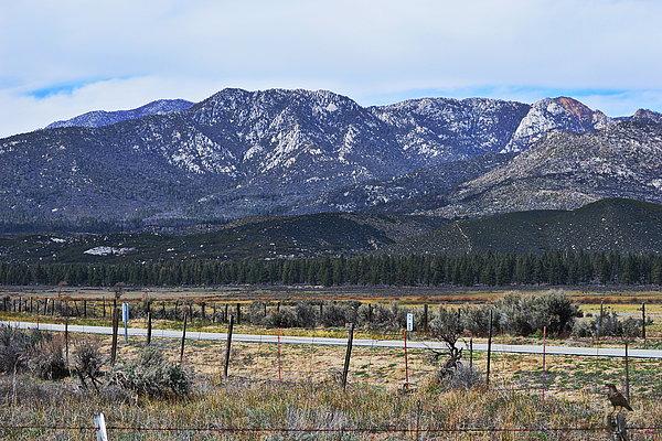 Glenn McCarthy Art and Photography - San Jacinto Mountains - California