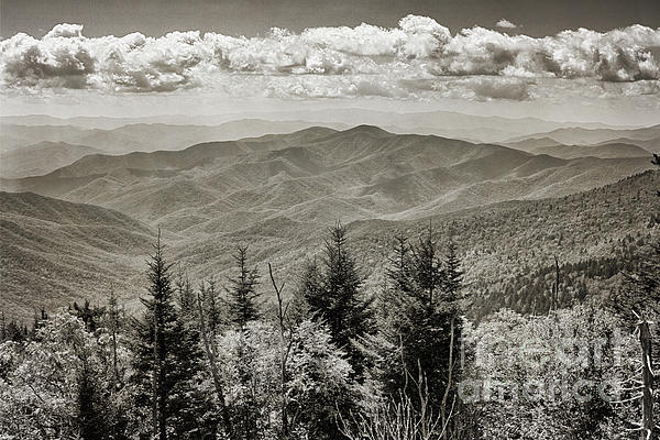 Tom Gari Gallery-Three-Photography - Smoky Mountains in Black and White