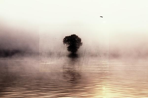 Jaroslav Buna - Sunrise