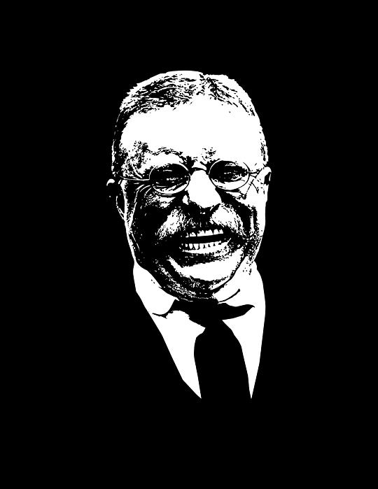 Teddy Roosevelt Digital Art