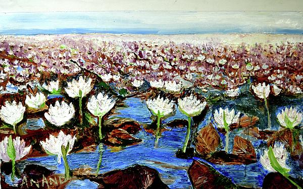 Anand Swaroop Manchiraju - Valley Of Flowers-4