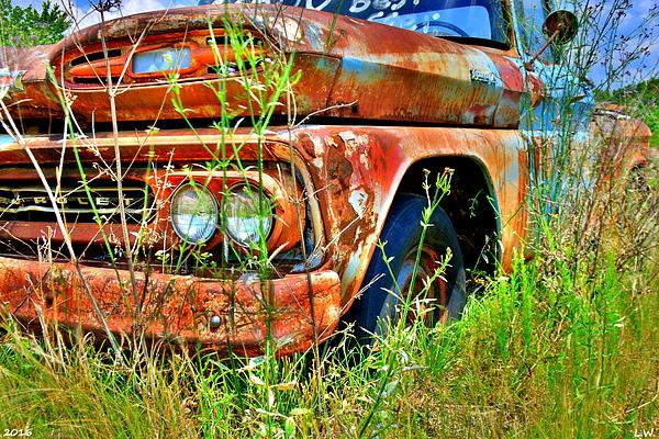 Lisa Wooten - 1961 Chevrolet Apache 10 3
