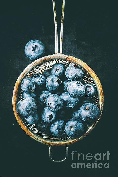 Jana Behr - Blueberries