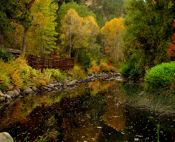 Marilyn Magee - Fall in the Rocky Mountains