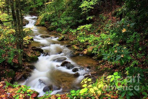 Jill Lang - Mountain Creek