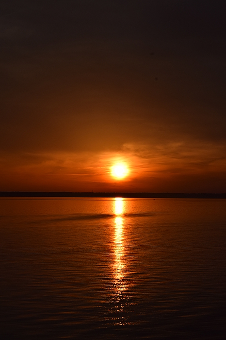 George Martinez - Sunset