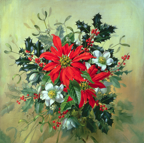 A Christmas Arrangement.A Christmas Arrangement With Holly Mistletoe And Other Winter Flowers Greeting Card
