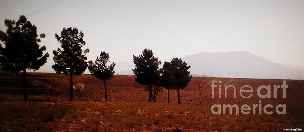 Nader Rangidan - A Large Steep Hill In Mist