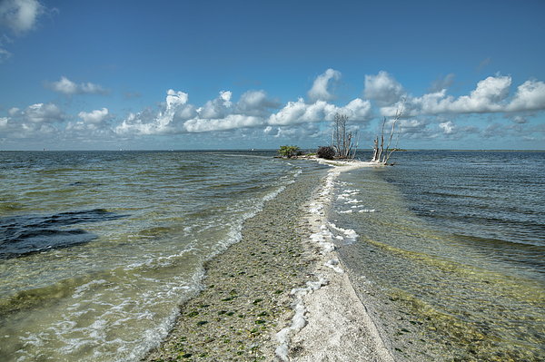 John M Bailey - A Strip of Island