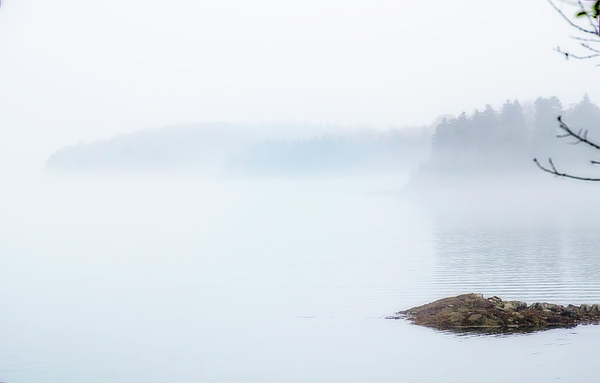 Terry Davis - A Time for Silence