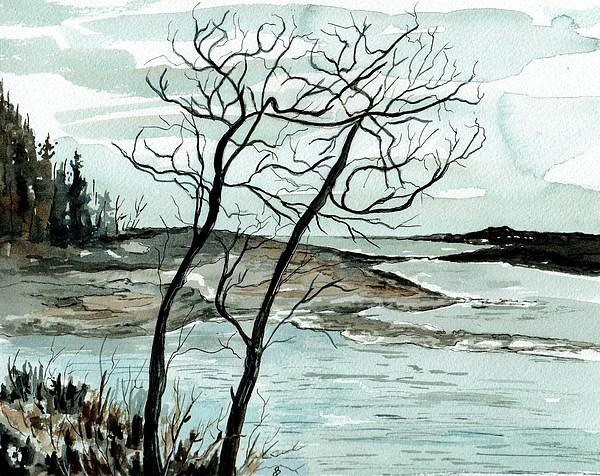 Brenda Owen - Acadia