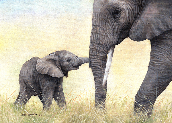 Sarah Stribbling - African Elephant and baby