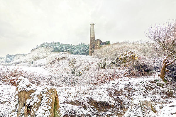 Terri Waters - Ale and Cake Mine in the Snow