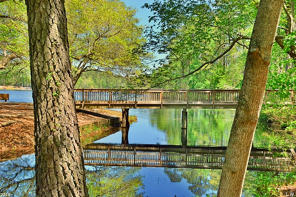 Lisa Wooten - Amazing Reflections At Sesquicentennial State Park