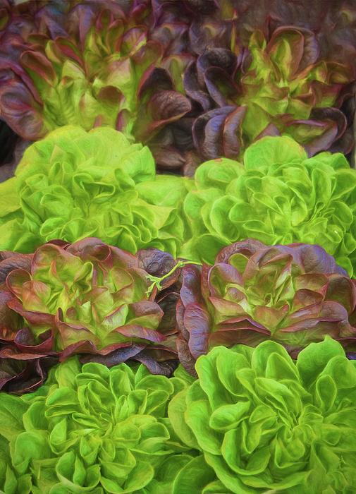 Joan Carroll - Artisinal Greens Madrid Spain