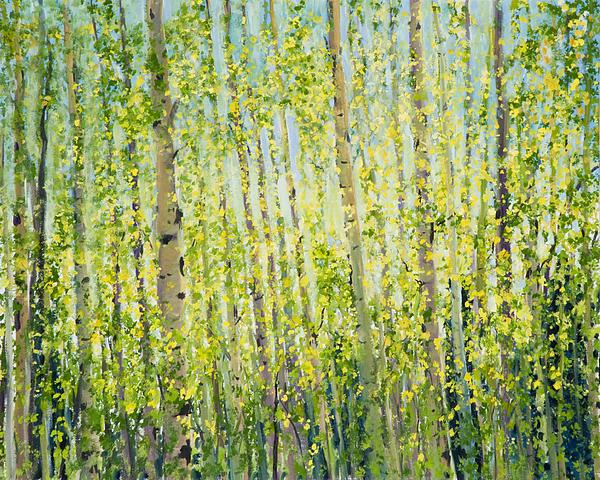 Julie Kreutzer - Aspen Grove Near Oak Creek