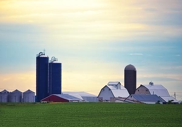 Chrystyne Novack - At First Light - Illinois Farmland